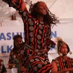 29th Annual Washington Folk Festival